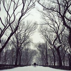 Anthony Danielle @takinyerphoto Instagram photos | Websta (Webstagram)