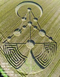 Crop Circle: Aparece nas áreas de Badbury (Dorset - Reino Unido) 17 de junho 2014 - Disso Você Sabia ?