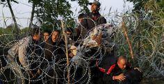 Vino y girasoles...: El negocio de la guerra hace a Europa responsable ...