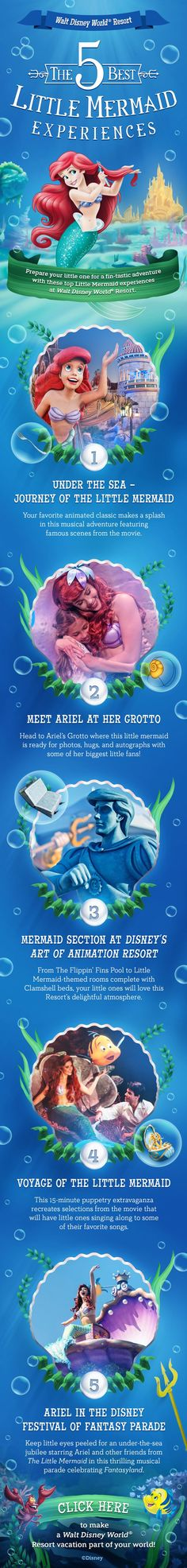 Does your little one love the Little Mermaid? Learn more about how you can be part of Ariel's world at Walt Disney World!