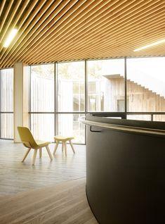 Kuskoa lounge armchair in Olatu Leku, technological center dedicated to the boardsport industry