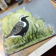 Black-bellied #plover is done!  Looking forward to finding frames for these new pieces. #art #mixedmedia #nature #wildlife #birds