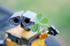 This HD wallpaper is about green clover leaf and yellow Wall-E robot toy, WALL·E, Shamrock, Original wallpaper dimensions is file size is Wall E, St Patrick's Day Photos, Cute Photos, Cute Pictures, Original Wallpaper, Hd Wallpaper, Wallpapers, Fete Saint Patrick, Timeline Cover