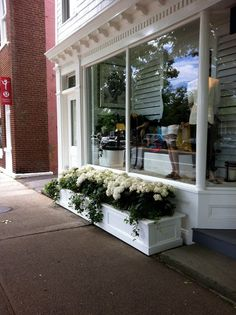 white hydrangeas in white planters - Ralph Lauren Store, East Hampton