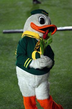 I Smell Roses! #GoDucks # WTD #TournamentOfRoses2014