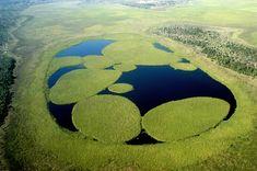 Esteros del Ibera: A natural paradise...
