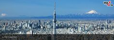 東京、日本