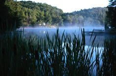 beautiful northwoods offers over 3200 lakes streams and rivers