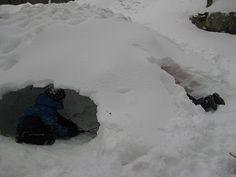 make a snow fort!!