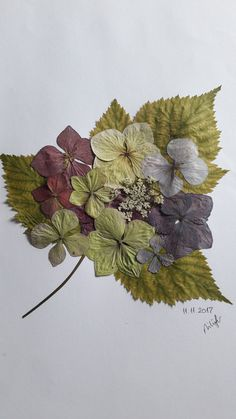 #Floressecas Dried And Pressed Flowers, Pressed Flower Art, Dried Flowers, Silk Flowers, Paper Flowers, Flower Collage, Flower Prints, Art Floral, Deco Nature