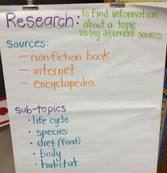 Second Grade Style: Nonfiction- good ideas for doing a research project, too