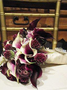 plum calla lilies, two tone calla lilies,   monkey tails