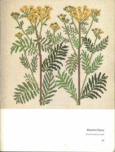 Gallery.ru / Фото #77 - Книга с яблоневой веткой на обложке - Mosca