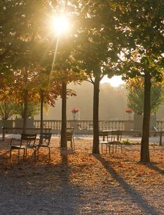 Luxembourg Garden, Paris VI: A city that nourishes the soul in a thousand little ways every day.