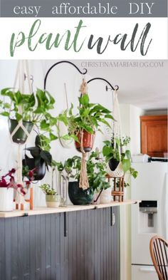 This budget friendly project leaves a BIG impact and gives a beautiful display for your indoor plants to thrive! Check out the DIY details in the post! #Plantlady #houseplants #indoorplants #plantwall #hangingplants Leafy Plants, Big Plants, Indoor Plant Wall, Indoor Planters, Plants Indoor, Low Maintenance Indoor Plants, White Planters, Plant Needs, Hanging Plants