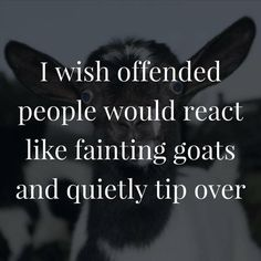Funny Pictures | Funny Quotes | Offended People