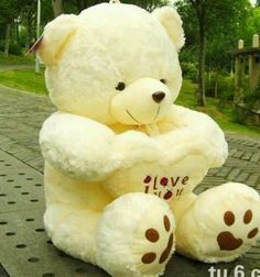 Valentines Day. See More. Teddy Bear