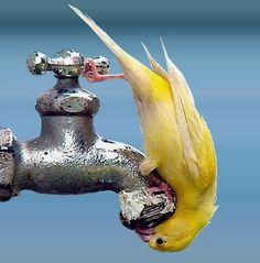I need a drink!!!