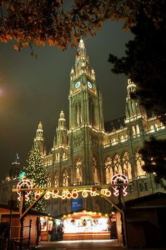 Voyager ©: Christmas Market with City Hall, Vienna, Austria (by Amira) Places Around The World, Oh The Places You'll Go, Places To Travel, Places To Visit, Around The Worlds, Christmas In The City, Christmas Markets Europe, Vienna Christmas, Wonderful Places