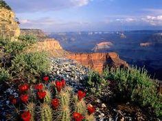 national parks - Bing images