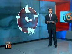 Ramón Ulloa explica la historia, síntomas y métodos de contagio del ébola   Tele 13 - http://yoamoayoutube.com/blog/ramon-ulloa-explica-la-historia-sintomas-y-metodos-de-contagio-del-ebola-tele-13/