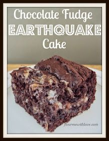 Chocolate fudge, cream cheese, coconut and chocolate chips blended into one delicious cake!