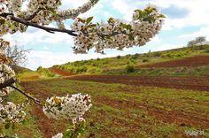 Jó idő (k)útja: Tavasz