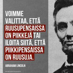 Voimme valittaa, että ruusupensaissa on piikkejä tai iloita siitä, että piikkipensaissa on ruusuja. — Abraham Lincoln