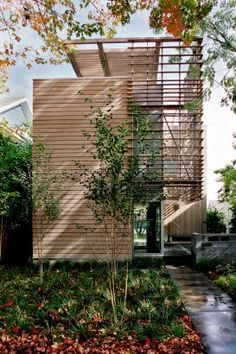 Madrona residence:Vandeventer Carlander Architects