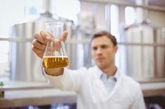 Yeast and bacteria 101: Brettanomyces, lactobacillus, pediococcus
