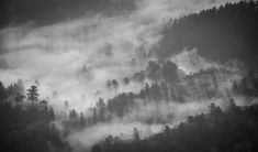Sure Fire Black And White Landscape Techniques That Will Make People Look Twice