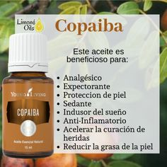 Young Living Oils, Young Living Essential Oils, Terra Oils, Esential Oils, Body Care, Beauty Hacks, Remedies, Learning, Health