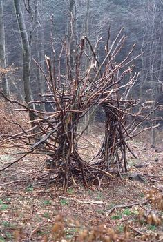 Andy Goldsworthy - 1986 Woven branch circular arch.