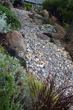 Awesome dry riverbed idea.