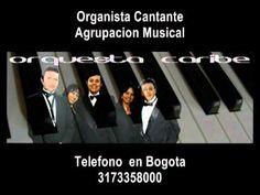 ORGANISTA- GRUPO MUSICAL PARA TODO EVENTO TEL. 3164714211