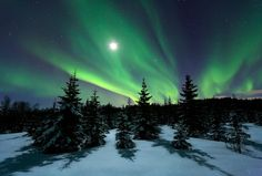 Winter Night - A cold and nice night out in the woods a couple of years ago. This was licensed and locked by canon until recently, so finally i can have it online again... To purchase a print: http://arildheitmannphoto.photoshelter.com/gallery-image/Aurora-Borealis/G0000PngpPW.4Lpg/I0000V6kkhjzq._8