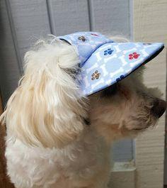 fe93c652474 Small Dog Visor Hat Blue Paw   Bone Print Doggy SuperVisor Dog Beach