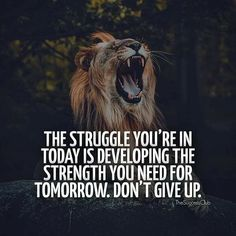 Don't quit! Your life is on the line 👊🏼 - the. Ambition Quotes, Courage Quotes, Wisdom Quotes, Qoutes, Law Of Attraction Affirmations, Law Of Attraction Quotes, The Success Club, Entrepreneur, Lion Love