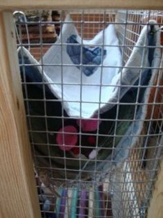Rats are very intelligent animals and thus need interesting cages and toys to keep them stimulated. Even if you do not own any tools, know how to sew, or have much time to build anything fancy, there are still many simple and easy ways to...