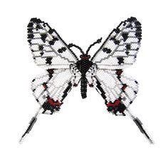 Бабочка Серицин Монторела из бисера.
