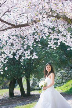 #春フォト #ウェディング #フォト婚 #桜 #ロケーションフォト #weddingphotography