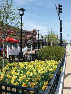 Lisle, IL - Town Focus - West Suburban Living ... #lisle