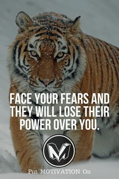 """Chase what chases you until it realizes you're stronger (EMM) --->>> """"Face your fears and they will lose their power over you"""""""
