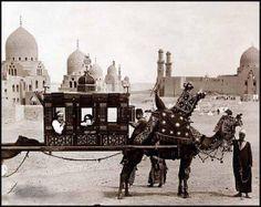 c 1880  Bridal party Cairo