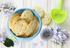 "Sand dollar cookies with turbinado ""sand"""