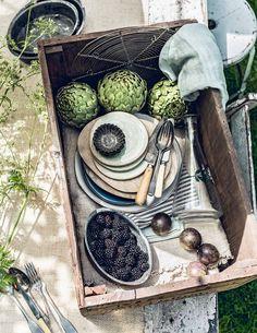 Oude houten kist met dinerborden en bestek | Old wooden chest with dinner plates and cutlery | vtwonen 07-2017 | Fotografie Sjoerd Eickmans | Styling Danielle Verheul