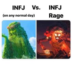 Infj Mbti, Intj And Infj, Infj Type, Isfj, Drama Memes, Infj Personality, Gemini And Cancer, Parenting Memes, Hilarious