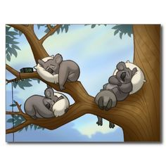 cute koala illustration - Google Search