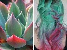 Colour inspired by nature