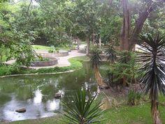 Zoologico de Caricuao En el Municipio Libertador. El Parque Zoológico de Caricuao, está dividido en siete ambientes distintos, en los cuales se reparten a las diferentes especies de animales en ambientes que pretenden imitar sus hábitats naturales.